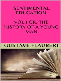 SENTIMENTAL EDUCATION VOL 1 OR, THE HISTORY OF A YOUNG MAN