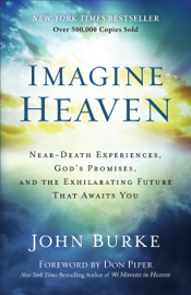 Imagine Heaven book