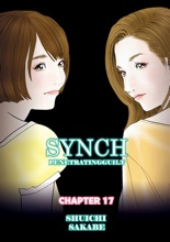 SYNCH Chapter 17