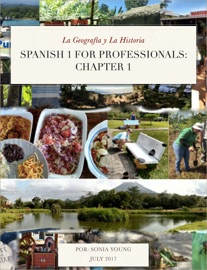 Spanish 1 For Professionals