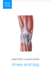 Anatomy flashcards: Knee and leg