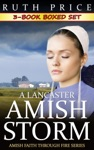 A Lancaster Amish Storm 3-Book Boxed Set