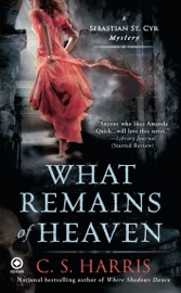 What Remains of Heaven PDF Download