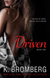Driven - K. Bromberg book summary