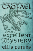 An Excellent Mystery