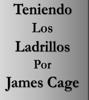 James Cage - Teniendo los Ladrillos ilustración
