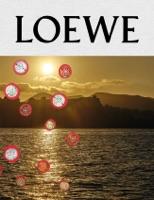 LOEWE Publication No.11