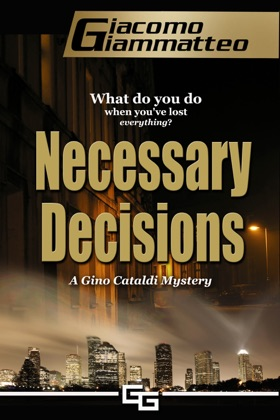 Necessary Decisions book cover
