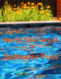 How to Take Care of a Saltwater Pool book
