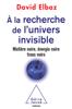 À la recherche de l'Univers invisible - David Elbaz