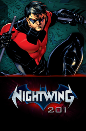 Nightwing 201 Booklet