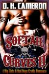 Softail Curves II A Big Girls  Bad Boys Erotic Romance