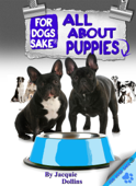 All About French Bulldog Puppies