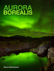 Snorri Gunnarsson - Aurora Borealis artwork