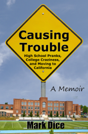 Causing Trouble book
