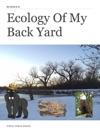 Ecology Of My Back Yard