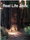 Real Life Java