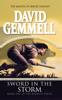 David Gemmell - Sword In The Storm kunstwerk