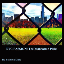 NYC PASSION: The Manhattan Picks
