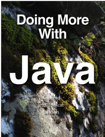 Doing More With Java book