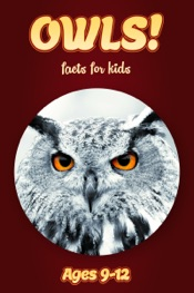 Owl Facts For Kids 9-12