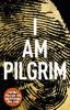 Terry Hayes - I Am Pilgrim kunstwerk