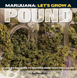 Marijuana: Let's Grow a Pound