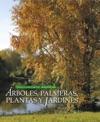 Rboles Palmeras Plantas Y Jardines