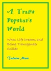 A Trans Popstars World When Life Dreams And Being Transgender Collide A Novel