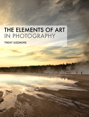 The Elements of Art In Photography - Trent Sizemore book