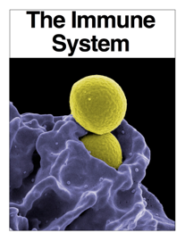 The Immune System book