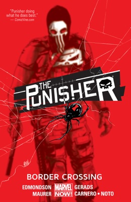 The Punisher Vol. 2