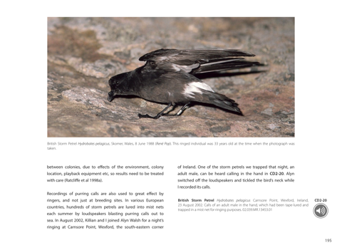 Petrels night and day by Magnus Robb, Killian Mullarney & The Sound  Approach on Apple Books