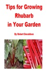 Tips For Growing Rhubarb In Your Garden