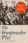 The Gunpowder Plot History In An Hour