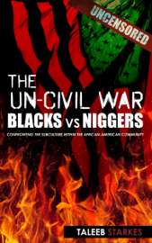The Un-Civil War: Blacks vs Niggers