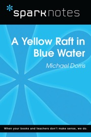 Yellow Raft In Blue Water Sparknotes Literature Guide