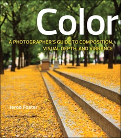 COLOR: A PHOTOGRAPHERS GUIDE TO DIRECTING THE EYE, CREATING VISUAL DEPTH, AND CONVEYING EMOTION