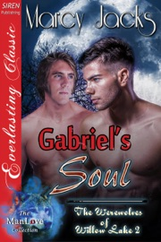 Gabriel S Soul The Werewolves Of Willow Lake 4