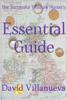 David Villanueva - The Successful Treasure Hunter's Essential Guide artwork