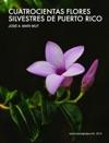 Trescientas Flores Silvestres De Puerto Rico
