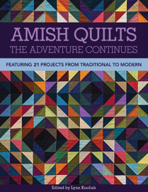 Amish Quilts—The Adventure Continues