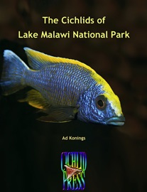 THE CICHLIDS OF LAKE MALAWI NATIONAL PARK