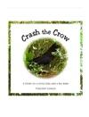 Crash The Crow