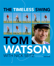 The Timeless Swing (with embedded videos) book
