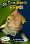 What Makes A Reptile A Reptile