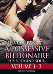Boxed Set: A Possessive Billionaire -  Vol. 1-3