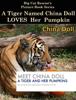 Big Cat Rescue - China Doll Loves Pumpkins artwork