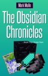 The Obsidian Chronicles Book One Ender Rain