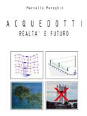 Acquedotti - Realtà e futuro Book Cover